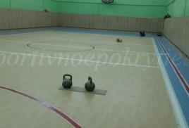 Баскетбольная и волейбольная разметка в г. Пушкино